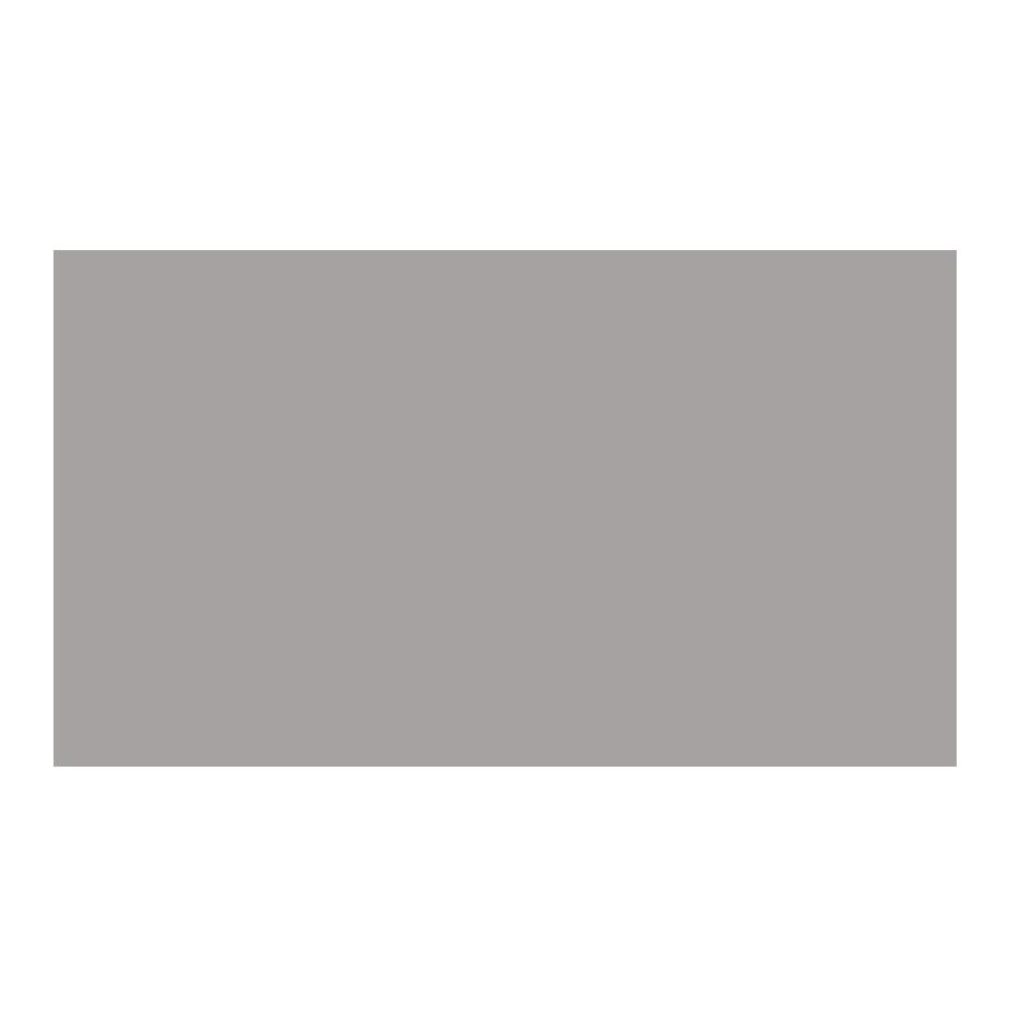Lietuvos_draudimas-grayscale-gray